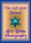 Soft Gem Award