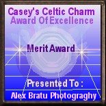 Casey's Celtic Charm Merit Award of Excellence